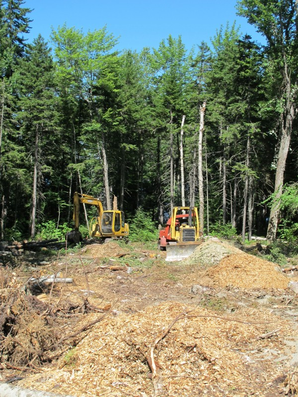 Workers from Harold MacQuinn Inc. clear a potion of forest leading to the site of what will be new state-owned boat launch on Branch Lake in Ellsworth on Monday, July 9, 2012.