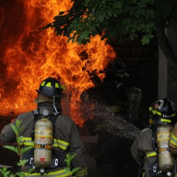 'Raging inferno' destroys Troy home, kills dog and cat