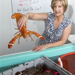 Maine investigates lobster dealers