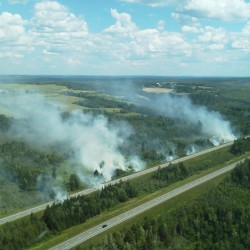Firefighters, forest rangers battle grass fires along I-95
