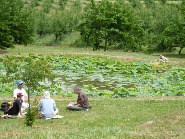 A lotus pond at the Plum Village Monastery in the south of France, where Orono yoga instructor Sandy Cyrus attended a mindfulness retreat in June 2012.