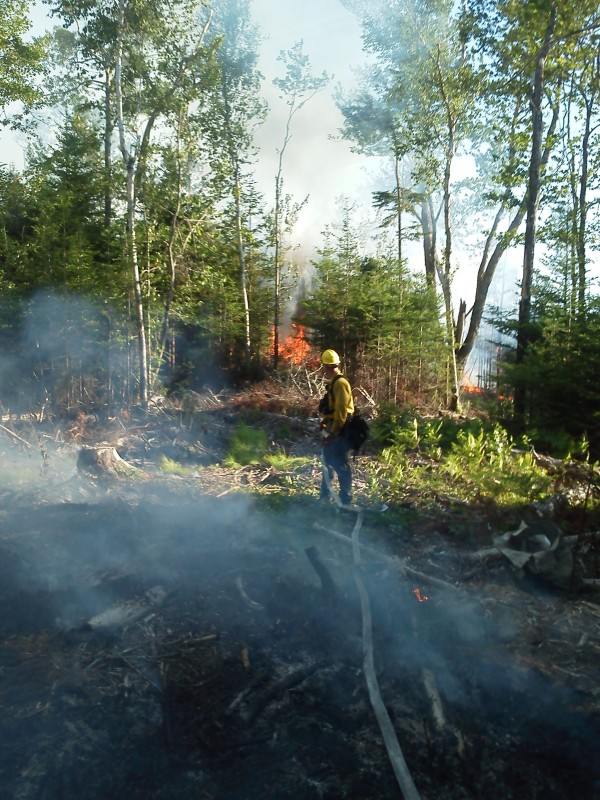 Ranger Ben Goodwin fights a fire Wednesday, July 11, 2012, on seven acres of forest in Steuben.