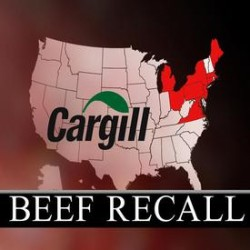 Salmonella cases spread, source of Hannaford beef still unidentified