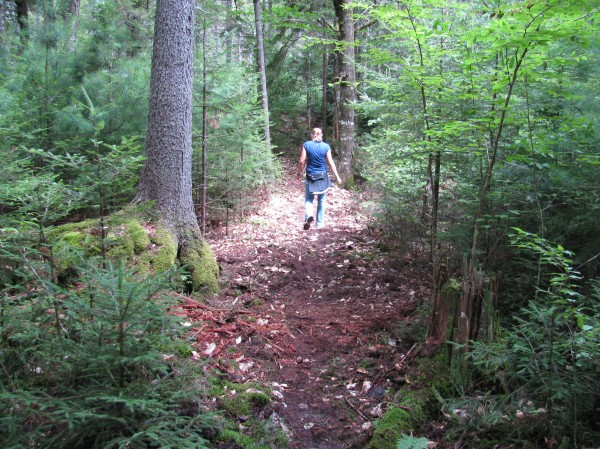 Ellsworth's city planner, Michele Gagnon, inspects a trail in Branch Lake Public Forest in August 2011. The city has contracted Maine Conservation Corps to add 2.6 more miles of trails in the city forest this October.