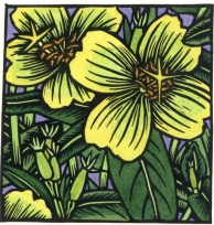 Woodlawn to offer 2 printmaking workshops in July.  Monotype printing with Debra Arter will be held on Tuesday, July 17, from 10 am-4pm.  On Friday, July 20, from 10 am-3 pm, Holly Berry will teach a Linoleum Block Printing workshop.  The cost to each workshop is $80 for Woodlawn members/$90 for non-members.