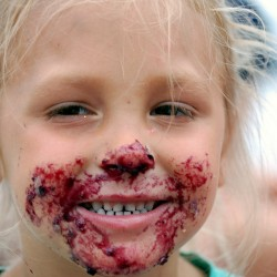 'Perfect' Machias Wild Blueberry Festival draws thousands