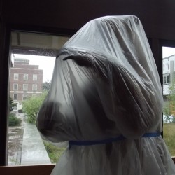 A mounted bear specimen poses, covered by a plastic tarp during summer renovations, in Nutting hall on Aug. 16.  It may not look like it right now, but University of Maine officials say two of the flagship campus' largest construction projects, Nutting Hall and Stewart, will be completed on schedule despite the university missing out on nearly $3.7 million in voter-approved bond funding that is being withheld by the state.