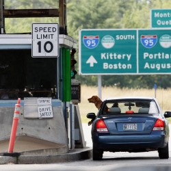A motorist and her dog wait for change at a toll booth, Thursday, July 19, 2012, in Biddeford, Maine.