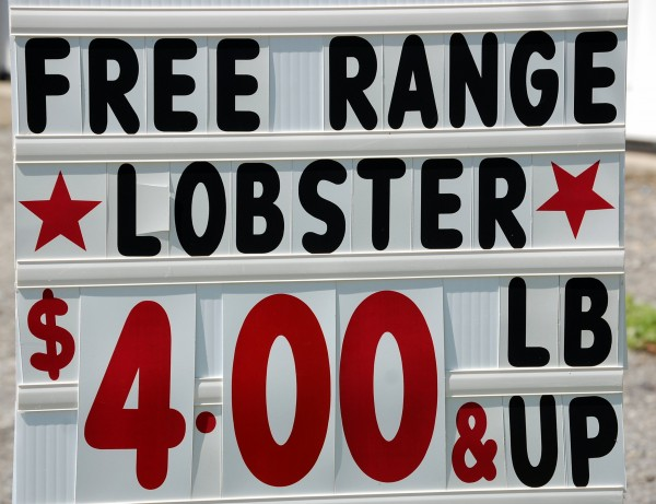 Given depressed prices for lobster, fishermen are getting creative in marketing their catch. Not only are the lobster sold by Ralph and Mary Cahoon out of their garage on Route 1 in Hancock organic, they're also &quotfree range.&quot