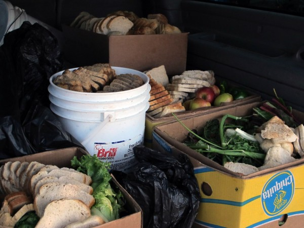 A sampling of the types of food gleaned by Chris Brown of Brown Family Farm. Brown feeds his pigs, and hungry community members at a weekly Soup Kitchen, with food gleaned from local farms, bakeries, restaurants and supermarkets.