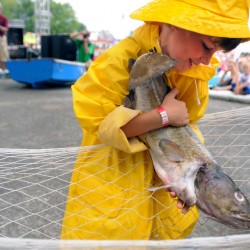 Maine Lobster Festival to kick off in Rockland