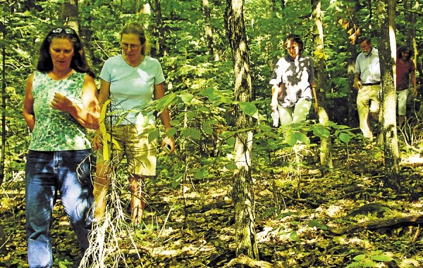 Members of the Dixmont Conservation Commission walk the proposed route of the town's first public walking trail, which they recently yellow-flagged. From left: Beth Swartz, DCC chair; Anne Warner; Judy Dann, Dixmont's first selectperson; Dick Andren; and Judy Cook. The trail will include the stretch of Old Route 9 behind the town office between the Dixmont Corner Cemetery and the Town House and will loop through the woods. The project is launching thanks to a $1,000 grant from the Healthy Sebasticook Valley Coalition and will be the result of collaboration between many groups and people in Dixmont.