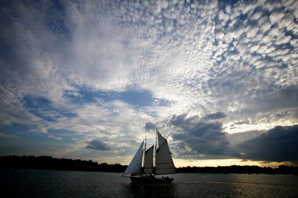 The Bagheera, named for the panther who raises Mowgli in Rudyard Kipling's The Jungle Book and owned by the Portland Schooner Company, sails along the Cape Elizabeth shore Monday evening, Aug. 13, 2012.