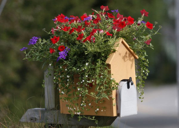 The mailbox at Moody's Nursery on Ferry Road in Saco.