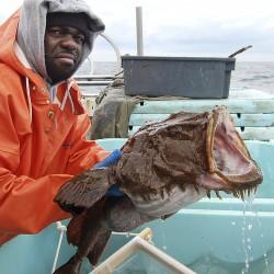 Report: Northeast fishermen catching less