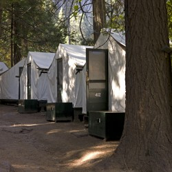Yosemite campers at risk for deadly hantavirus
