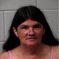 Visiting grandmother arrested on disorderly conduct charge