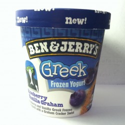 Greek yogurt: high in protein and rich in flavor
