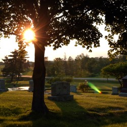 Mount Hope Cemetery website boasts new map of Bangor burials