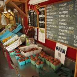 Belmont Farmers launch Kickstarter to build Route 3 Farm Stand