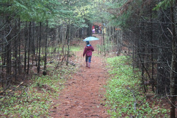 Brooke Bolstridge, a first-grader at Brownville Elementary School, walks down her school's interpretive nature trail on May 10, 2012, during the school's first &quotNature Trail Celebration Day.&quot