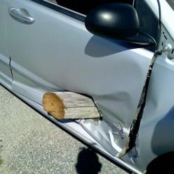 Trenton woman hurt in rollover