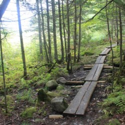 Hikers find peace and quiet at Bangor preserve