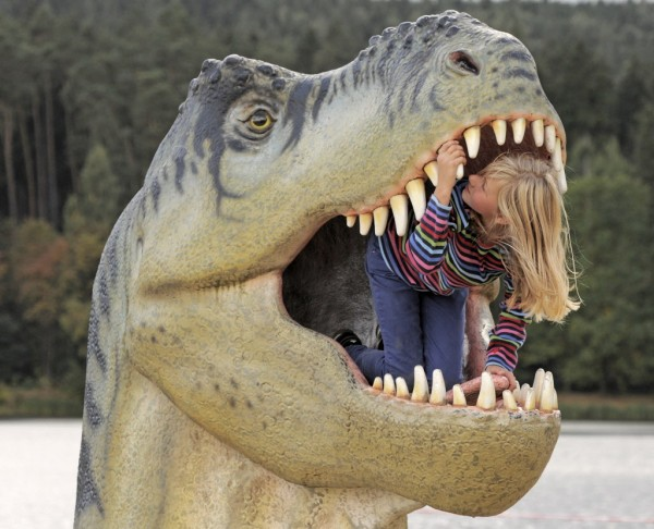 Ten-year old Adele Anhalt inspects the mouth of a model of a dinosaur in the exhibition &quotWorld of Dinosaurs&quot in Hohenfelden near Erfurt, central Germany, Tuesday, Sept. 25, 2012. From Sept. 15 to Nov. 4 the exhibition shows 65 models of 56 species of dinosaurs reproduced under scientific instructions in natural size. Among them are stegosaurs, diplodocus, triceratops, archaeopteryx, tyrannosaur, and other representatives of the Triassic, Jurassic and Cretaceous periods.