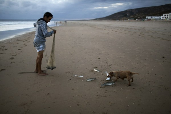 A man holds a net as he watches a stray dog take one of the fish he caught on a beach in the south of Spain on Wednesday, Sept. 26, 2012.
