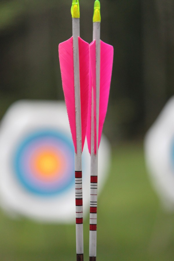 Two arrows with easy-to-see pink fletching are displayed at an introductory archery course on Sept. 15, 2012, during the Becoming an Outdoors-Woman (BOW) Introductory Skills Weekend at Camp Caribou in Winslow. The arrows were handmade by Mary Szwec, President of Friends of Maine BOW.