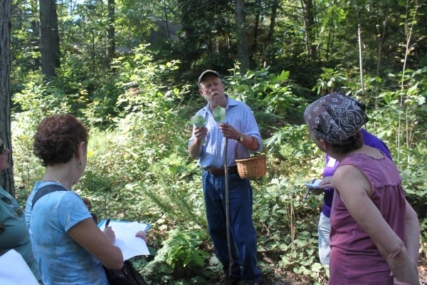 Maine naturalist Tom Seymour, author of several books on edible plants, finds large leaf aster while foraging with a group on Sept. 14, 2012, during the Becoming an Outdoors-Woman (BOW) Introductory Skills Weekend at Camp Caribou in Winslow.
