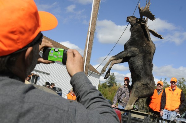 Ed Dube (foreground) of Caribou takes a picture of Joey Seeley (left), his son Tyler Seeley, 16 and Tyler's granddad Rudy Tardif (far right) as they had their 25-point, 936 lb. bull moose weighed at the Gateway Variety tagging station in Ashland on the first day of moose hunting season Monday, Sept. 24, 2012. Earlier in the day, Dube made the moose calls as the younger Seeley and his granddad shot the bull. The convenience store and tagging station was bustling with hunters as 22 moose were tagged there by noon.