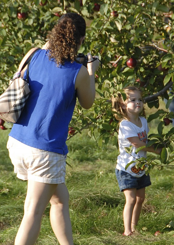 A mother photographs her daughter picking low-hanging apples at Johnston's Orchards in North Ellsworth.