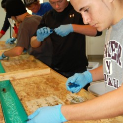 Washington Academy students help rear endangered North Atlantic salmon