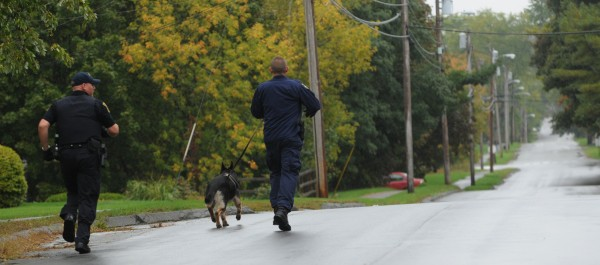 Police using a tracking dog run down Chamberlain Street in Brewer on Sunday, Sept. 30, 2012 after reports of an attempted robbery at Rite Aid on State Street in Brewer.