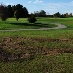 T(ee)LC: Tree removal at Bangor Municipal Golf Course expands 3 hitting zones