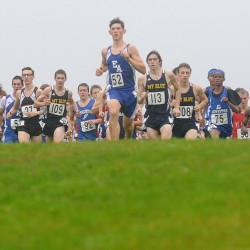 Ellsworth's Curts defends individual title; Lewiston, Cape Elizabeth, Boothbay crowned boys cross country state champions