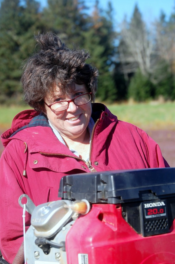 It's cranberry harvest time in Down East Maine. Christine Alexander is immersed in the Sugar Hill Cranberry Co.'s efforts to bring to market top-quality Maine cranberries.