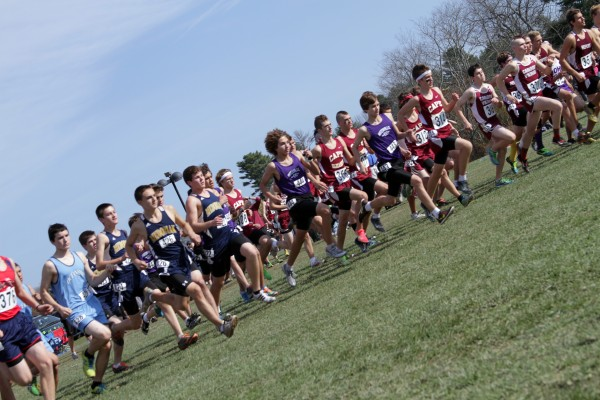 Runners take off at the start of the Class B boys race during the state championship meet at the Troy Howard Middle School course in Belfast Saturday. Cape Elizabeth went on to win the team title.