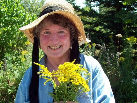 Nancy Oden is pictured in her Jonesboro garden recently, harvesting the medicinal herbs goldenrod and tansy.