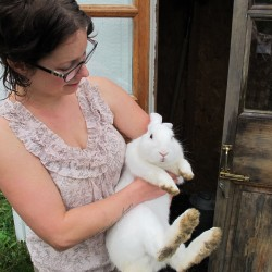 New Rabbit Rescue in Lamoine