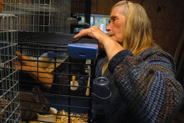 Lynn Stark of Greenfield Township tends to a rabbit in the indoor habitat at Samsara Exotic Animal Refuge on Friday, Oct. 5, 2012. For more than 20 years, the 69-year-old Stark has cared for abandoned farm animals and is now getting into temporarily housing cats, dogs and other pets of people undergoing hospitalization.