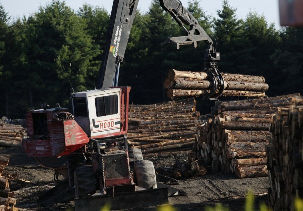 In this Friday, Aug. 7, 2009 photo, logs are stacked at the Pleasant River Lumber Company in Dover-Foxcroft.
