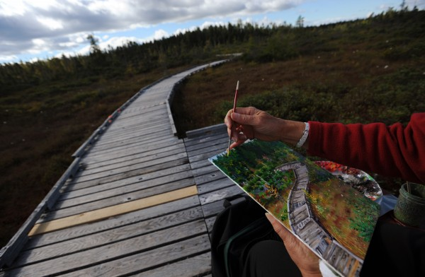 Teddi-Jann Covell of Orono paints a scene along the Orono Bog Boardwalk on Thursday, Oct. 11, 2012. Covell hopes to raise funds by selling her series of four paintings and donating the proceeds to future repair or replacement of the aging wooden walkway.