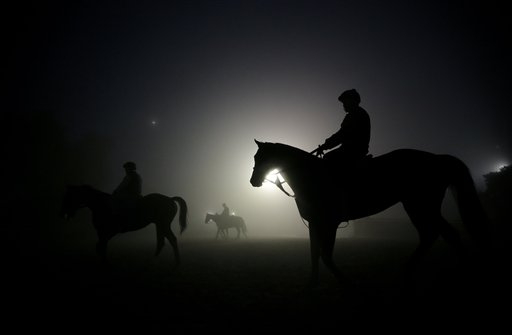 Exercise riders walk their horses during training sessions for the Breeders' Cup at Santa Anita Park in Arcadia, Calif., Wednesday, Oct. 31, 2012.
