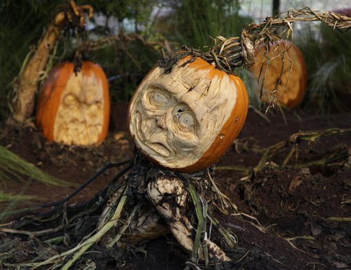 Carved pumpkins are displayed at the New York Botanical Garden in New York, Tuesday, Oct. 23, 2012. This carving and other Halloween-themed carvings will be on display through Oct. 31, 2012.