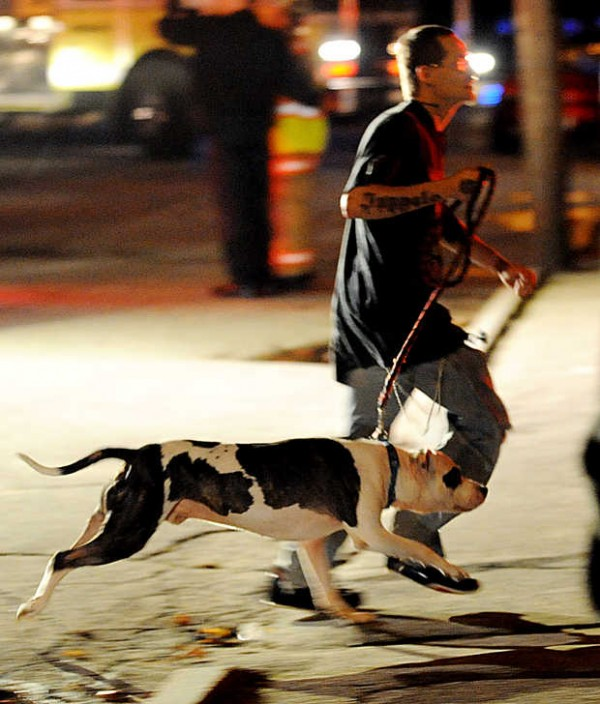 A man flees with a dog on Pierce Street as an apartment building blazes nearby Wednesday night.