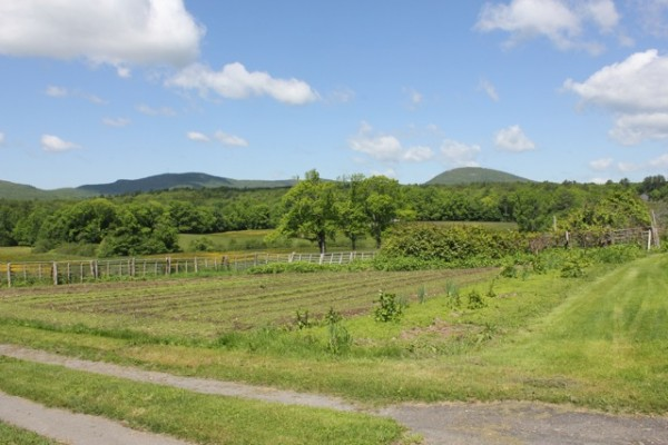 View of Rokes Farm fields where public is invited to Farm Walks Oct 21