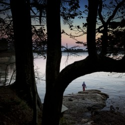 Trees frame a visitor at dusk at Wolfe's Neck Woods State Park in Freeport.