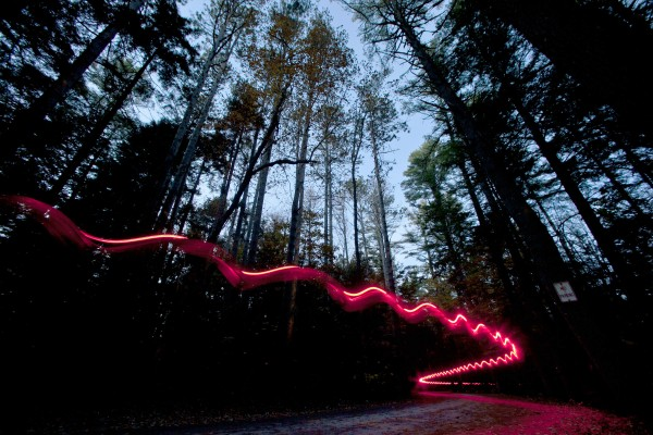 A jogger's headlamp marks his route on a public road that winds through the pine forest at Wolfe's Neck Woods State Park in Freeport.